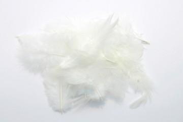 Barevná peříčka - bílá
