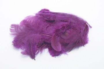 Barevná peříčka - tmavě fialová
