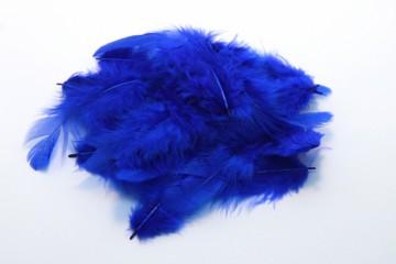 Barevná peříčka - tmavě modrá