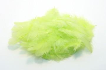 Barevná peříčka - světle zelená