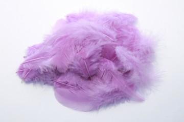 Barevná peříčka - lila
