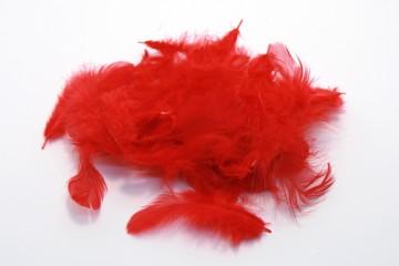 Barevná peříčka - červená