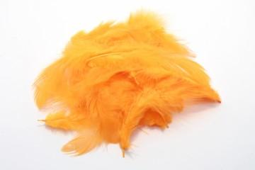 Barevná peříčka - světle oranžová