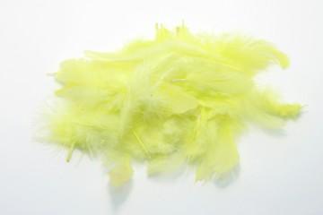 Barevná peříčka - žlutozelená
