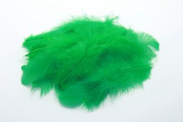 Barevná peříčka - zelená