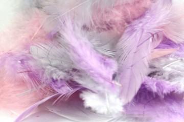 Barevná peříčka mix - fialová, růžová šedá